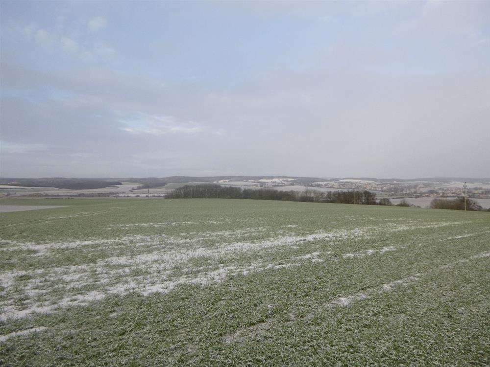 Dražba pozemků – orná půda, v obci Ostrovačice, okr. Brno-venkov